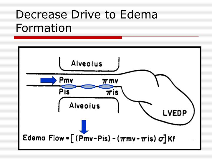Decrease Drive to Edema Formation
