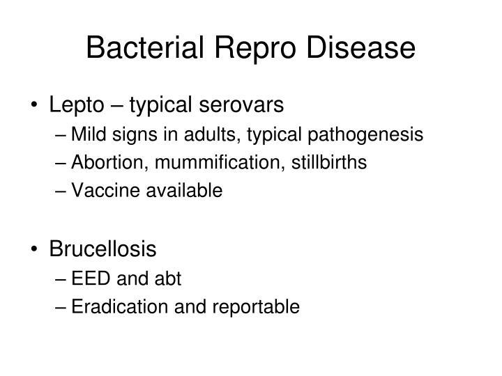 Bacterial Repro Disease