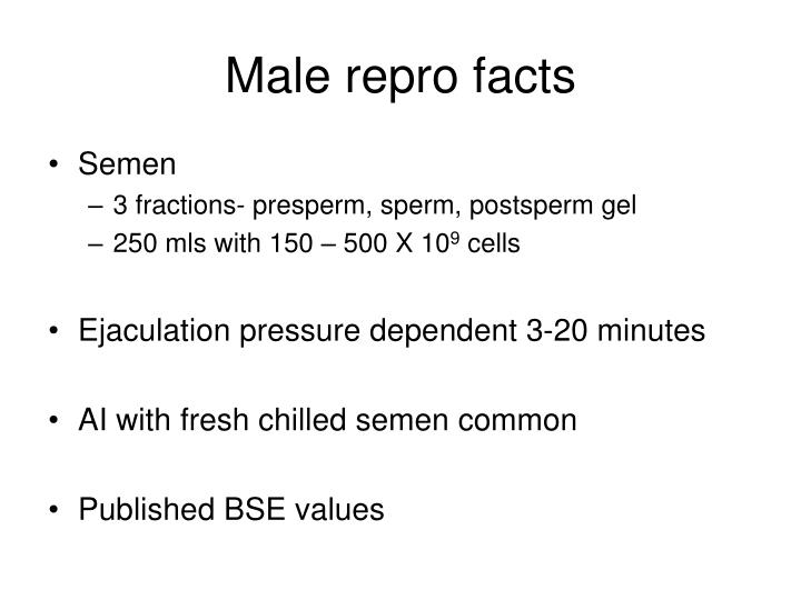 Male repro facts
