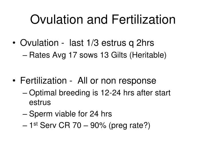 Ovulation and Fertilization
