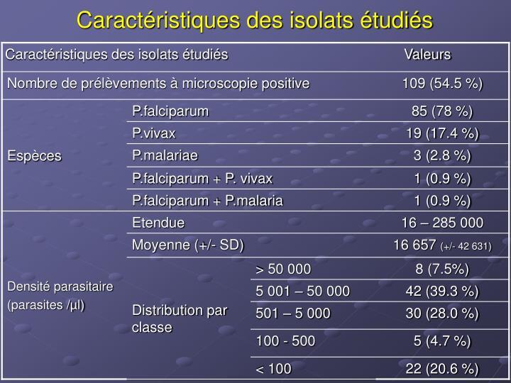 Caractéristiques des isolats étudiés                                             Valeurs