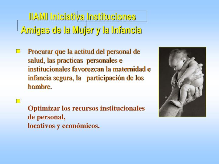 IIAMI Iniciativa Instituciones