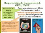 responsabilidade socioambiental odm pnef