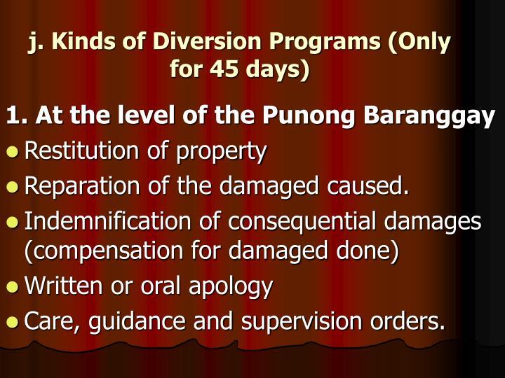 j. Kinds of Diversion Programs (Only for 45 days)