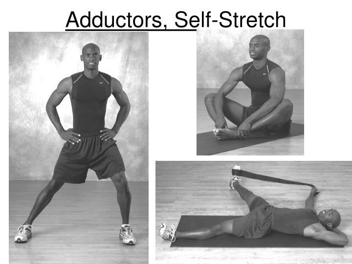 Adductors, Self-Stretch