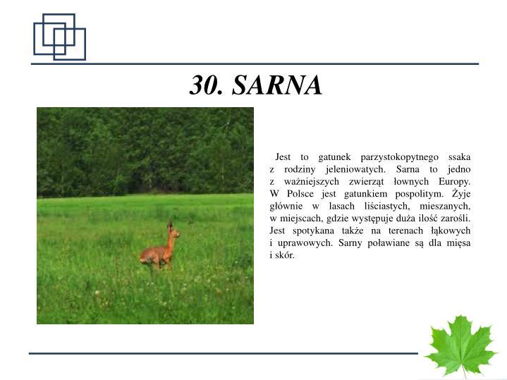 30. SARNA