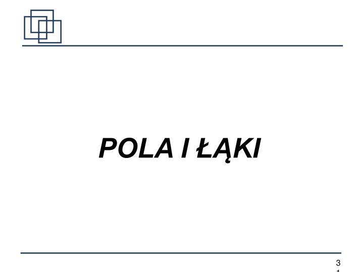 POLA I ŁĄKI