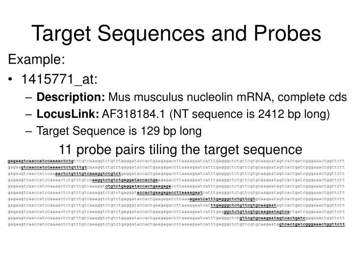 Target Sequences and Probes