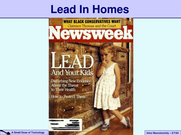 Lead In Homes