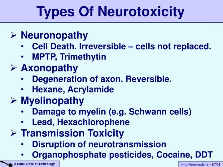Types Of Neurotoxicity