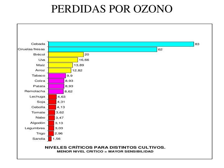 PERDIDAS POR OZONO