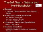 the gap team national and multi stakeholder