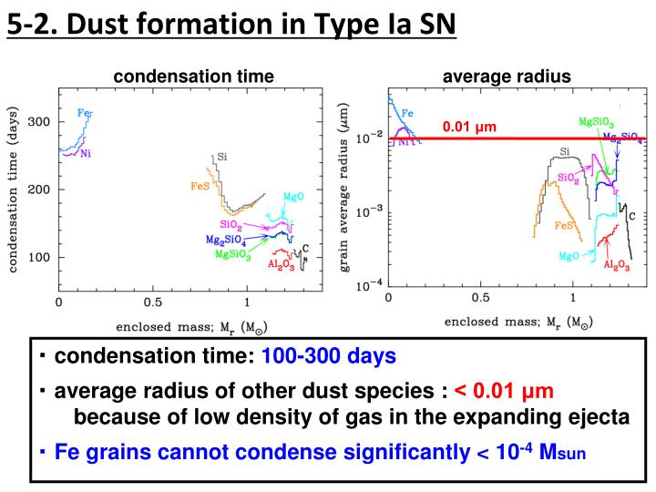 5-2. Dust formation in Type