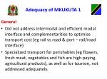 adequacy of mkukuta 11