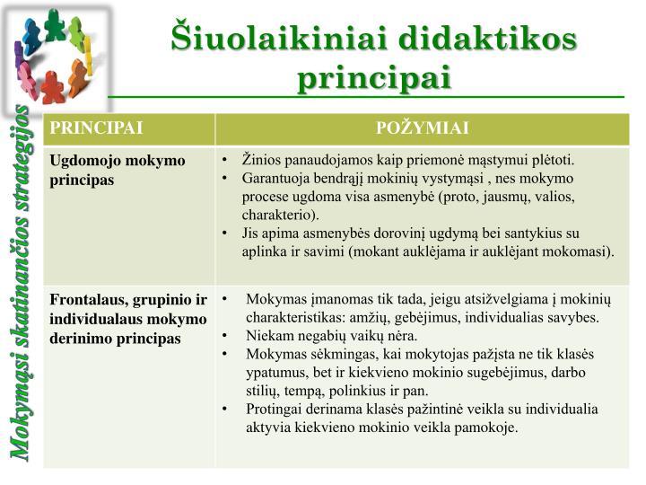 Iuolaikiniai didaktikos principai1
