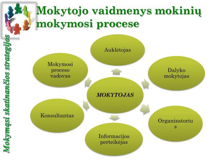 Mokytojo vaidmenys mokinių mokymosi procese