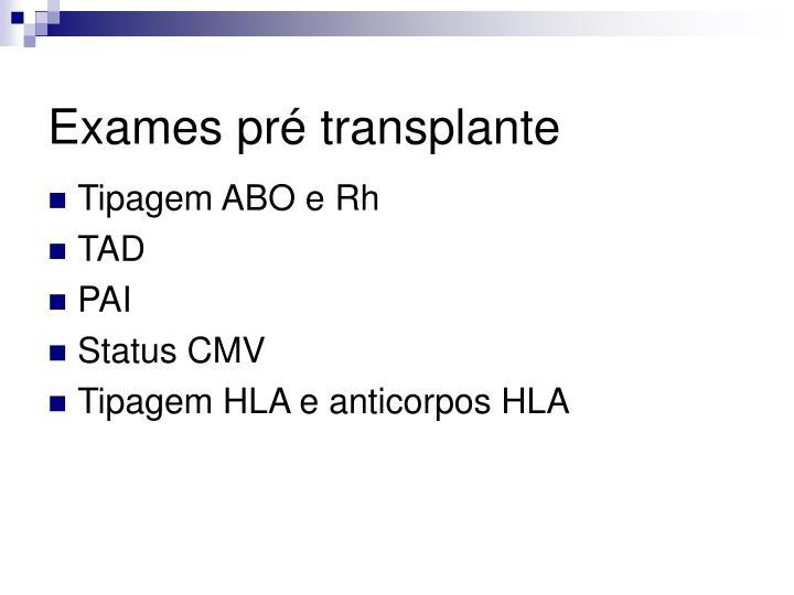 Exames pré transplante