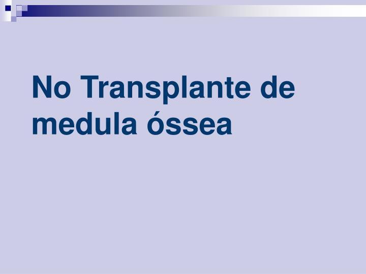 No transplante de medula ssea