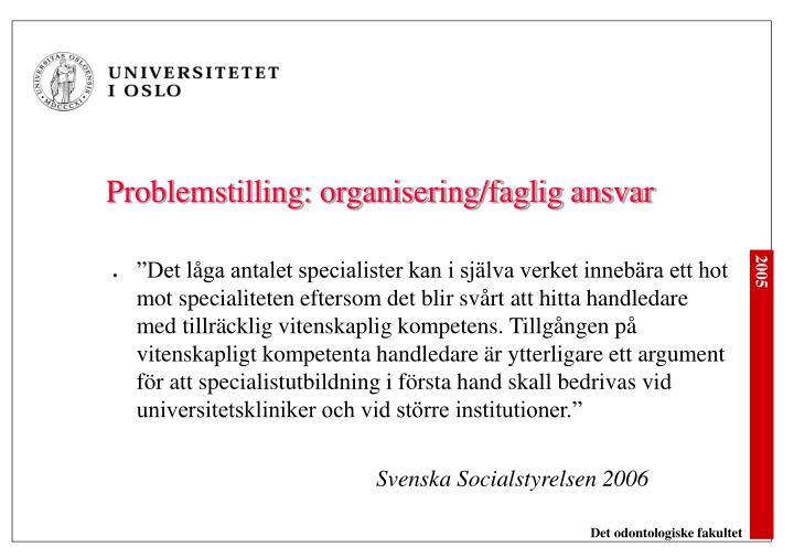 Problemstilling: organisering/faglig ansvar