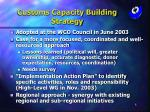 customs capacity building strategy