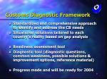 customs diagnostic framework