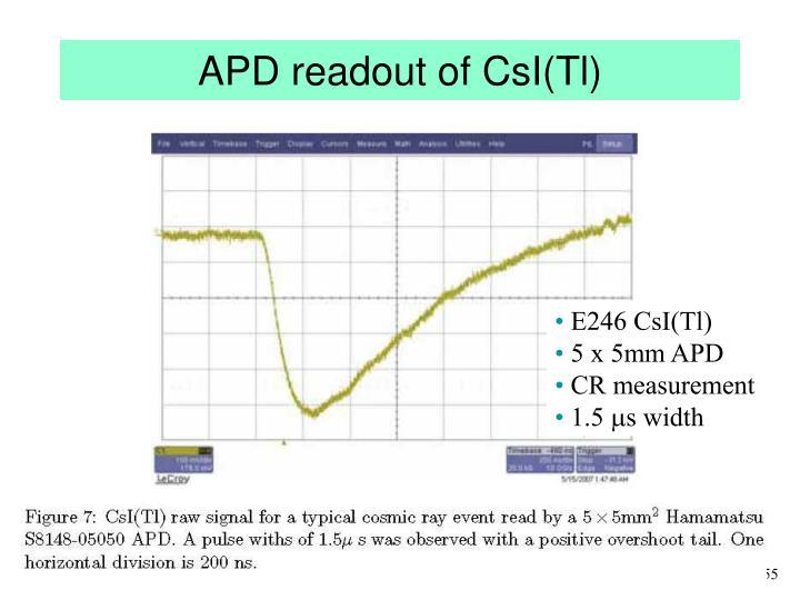 APD readout of CsI(Tl)