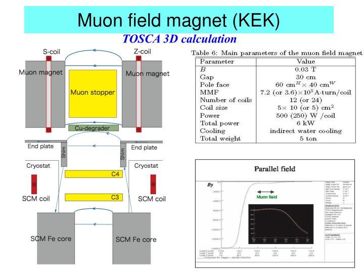 Muon field magnet (KEK)