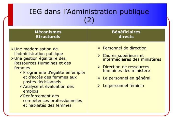 IEG dans l'Administration publique