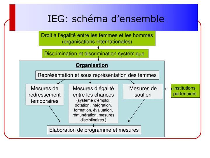 IEG: schéma d'ensemble