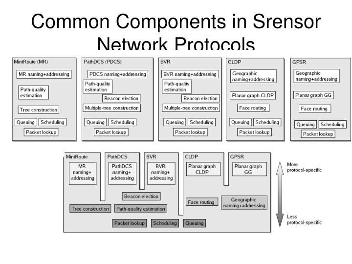 Common Components in Srensor Network Protocols