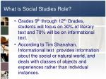 what is social studies role