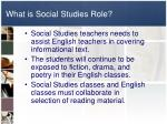 what is social studies role1