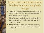 leptin is one factor that may be involved in maintaining body weight