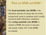 what are bmr and rmr