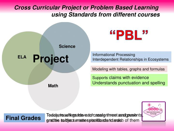 Cross Curricular Project or Problem Based Learning