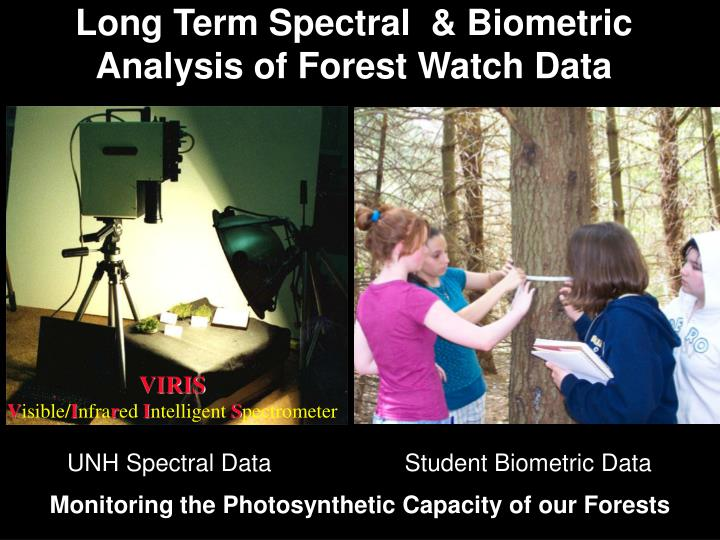 Long Term Spectral  & Biometric Analysis of Forest Watch Data