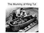 the mummy of king tut