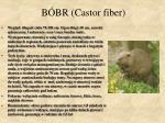 b br castor fiber
