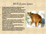 ry lynx lynx