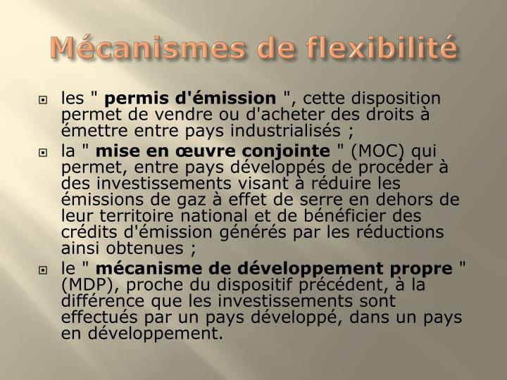Mécanismes de flexibilité
