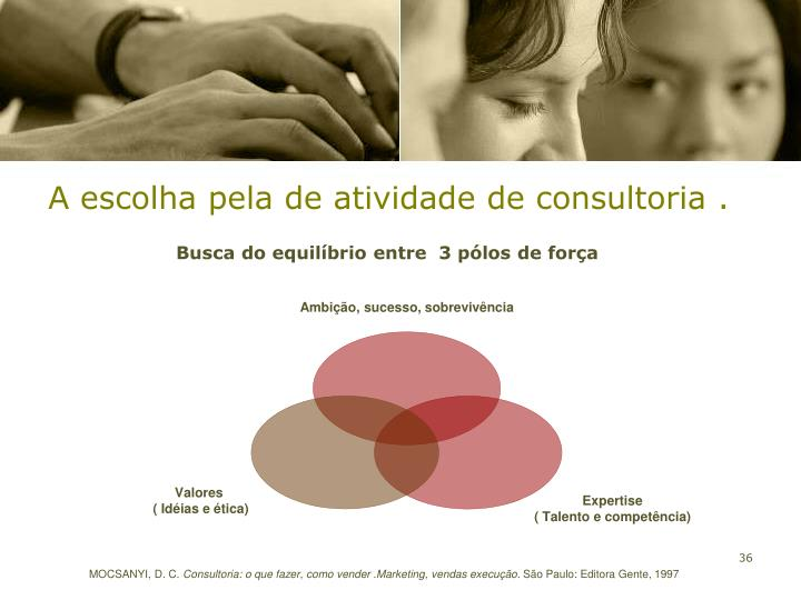 A escolha pela de atividade de consultoria .