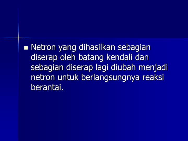 Netron