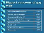 biggest concerns of gay men