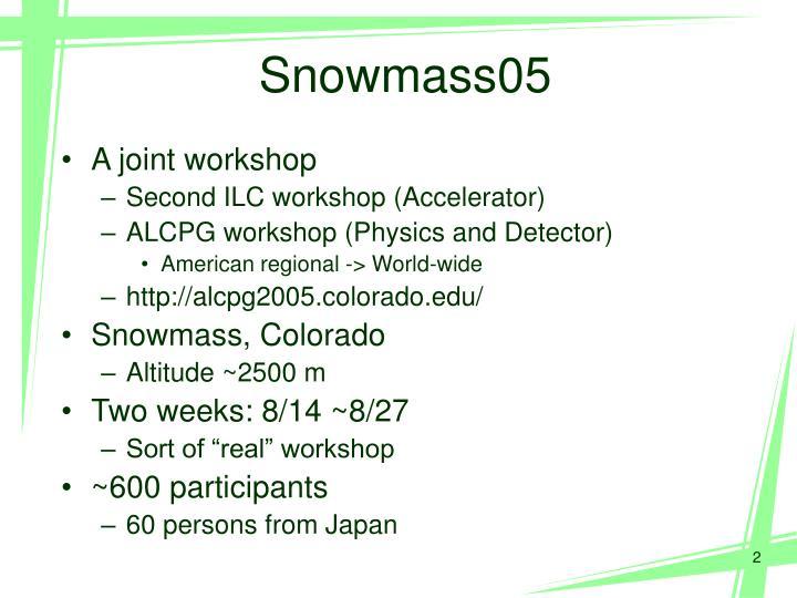 Snowmass05