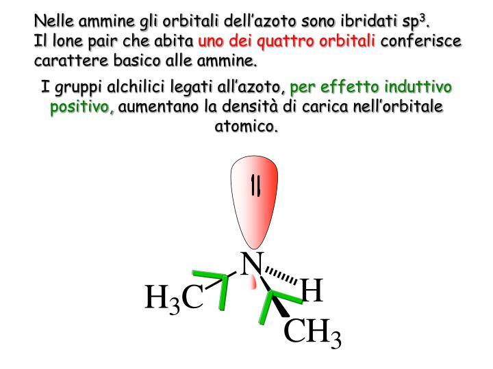 Nelle ammine gli orbitali dell'azoto sono ibridati sp