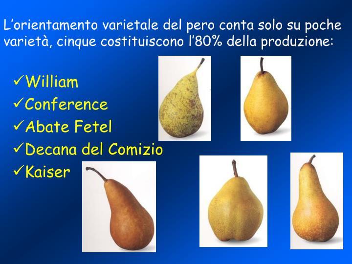 L'orientamento varietale del pero conta solo su poche varietà, cinque costituiscono l'80% della produzione: