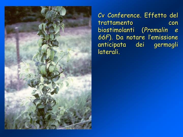 Cv Conference. Effetto del trattamento con biostimolanti (