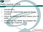 prefix routing cidr