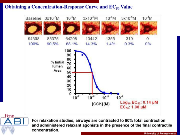 Obtaining a Concentration-Response Curve and EC
