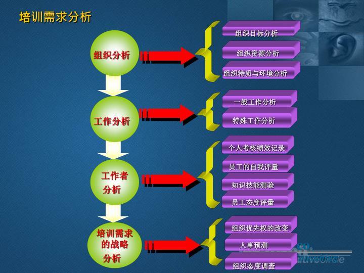 组织目标分析